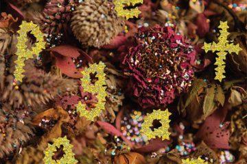 "PWR BTTM's sophomore album, ""Pageant."" Credit: Polyvinyl Records"