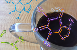 The hidden structure behind caffeine. Credit: Rachel Chang / The Foothill Dragon Press