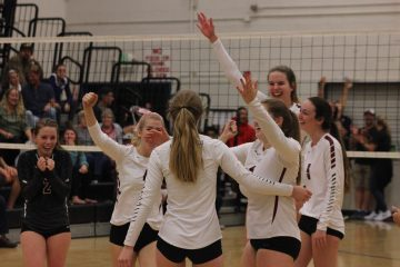The girls' volleyball team cheers after winning the game. Credit: Jason Messner / The Foothill Dragon Press