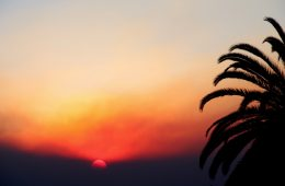 The sunrise through the smoke on Dec. 5, 2017. Credit: Abigail Massar / The Foothill Dragon Press