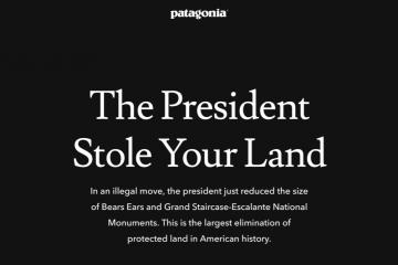 Screenshot of the Patagonia website.