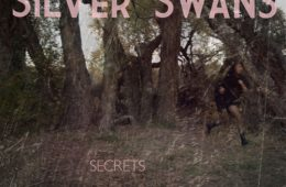 """Silver Swans' newest album, """"Secrets"""" was released in November 2010. Credit: Tricycle Records."""