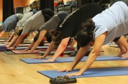 Yoga is an easy way to workout and calm down at the same time. Credit: Stevi Pell/The Foothill Dragon Press
