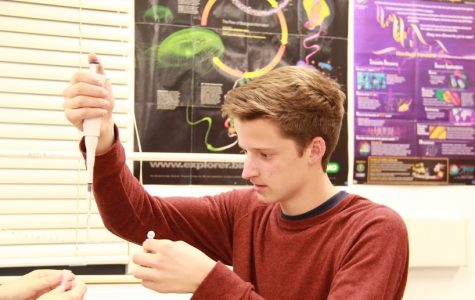 Students investigate fish labeling, decode DNA in after school program (17 photos)