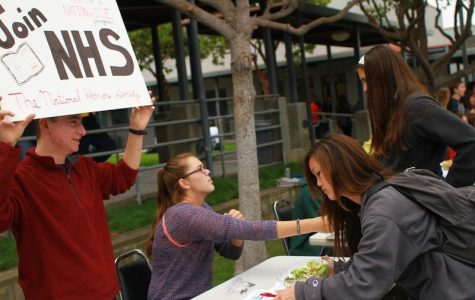 Club Rush showcases student diversity