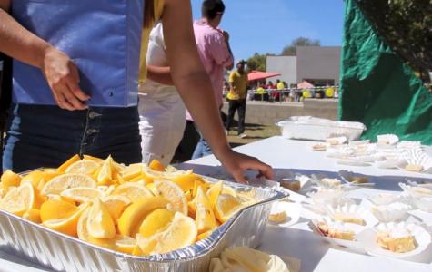 Lemon Festival 2014