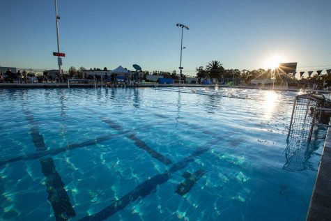 Boys' water polo fights to the end in last home game of the season