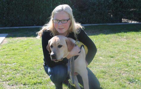 Raising a guide dog: a hard but rewarding experience