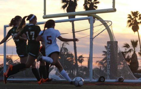 Girls' Soccer Game (10 photos)