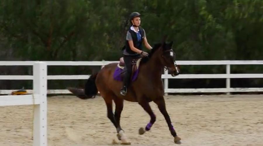Hannah Block: Equestrian Video
