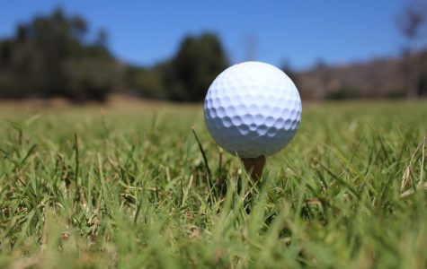 Boys' golf battles Buena and Ventura in first match of season