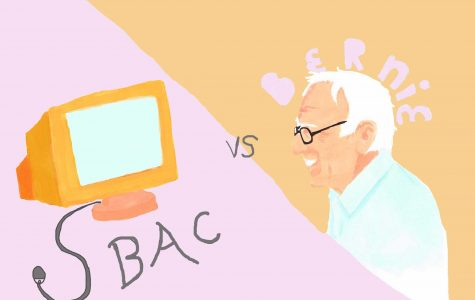 The Sanders rally and the SBAC are both educational
