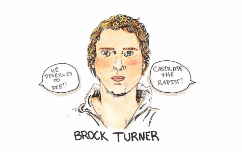 Illustration: Brock Turner