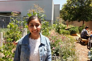 """Yoanna Soliman '19: The """"intense"""" journey from Egypt to the United States"""