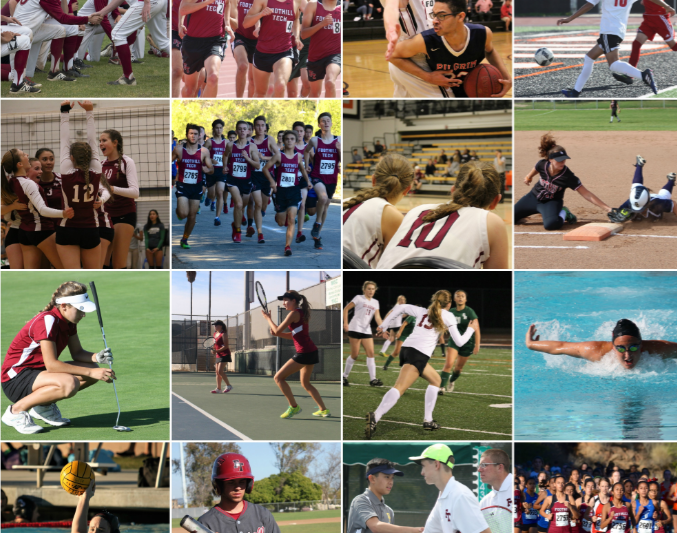 Dragon Athletics: Sports Retrospective 2017
