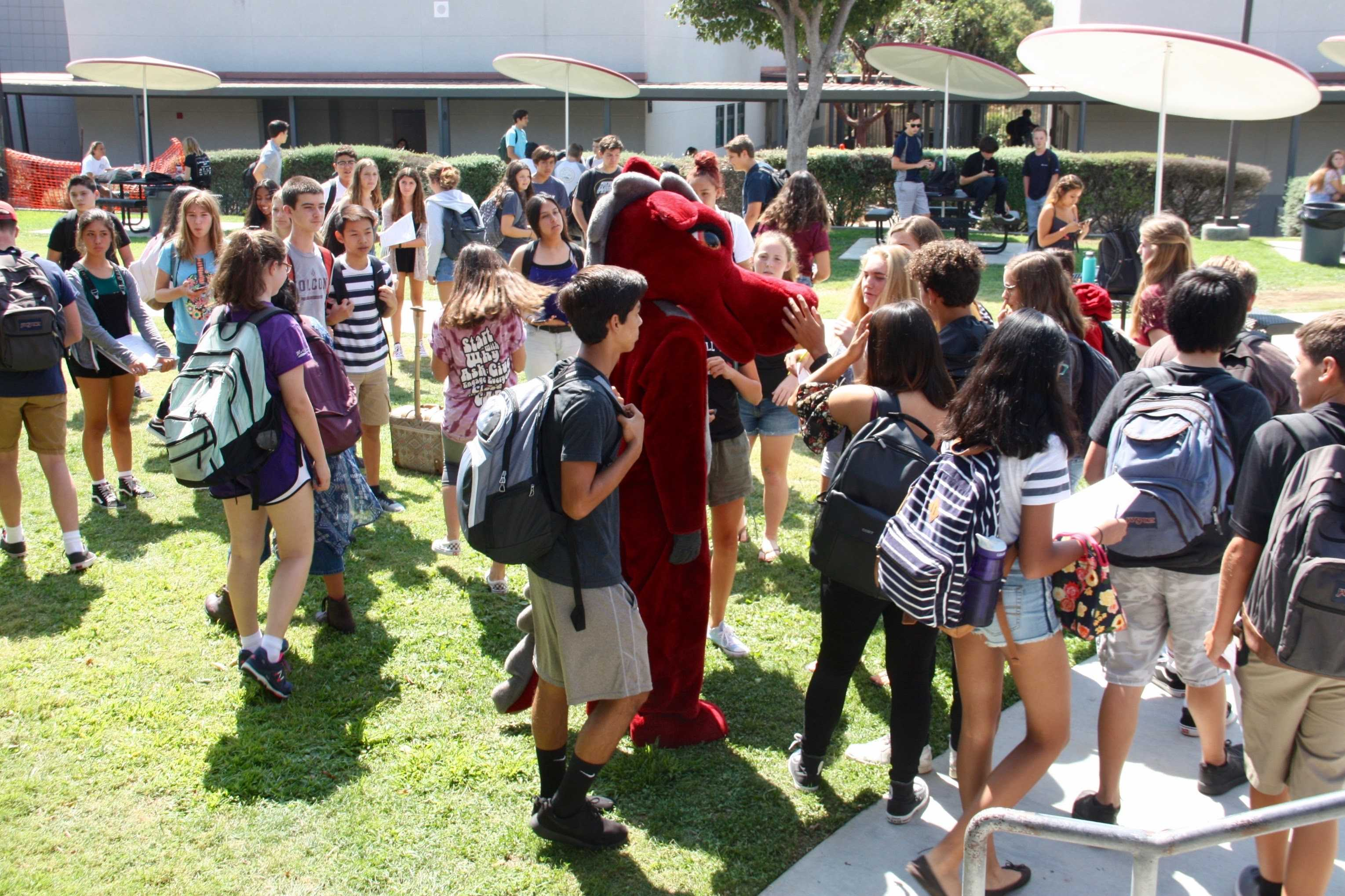 Freshman start strong rally allows students to build relationships and school spirit