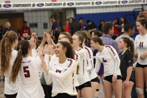 Girls' volleyball hammers Sharks in first round of state tournament