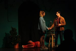 """Bye Bye Birdie,"" a magnificent musical mastered by the VHS Theater Department (18 photos)"