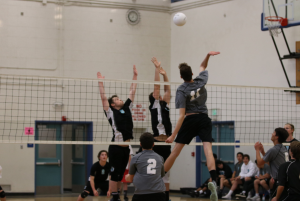 Boys' volleyball harpoons Sharks 3-0
