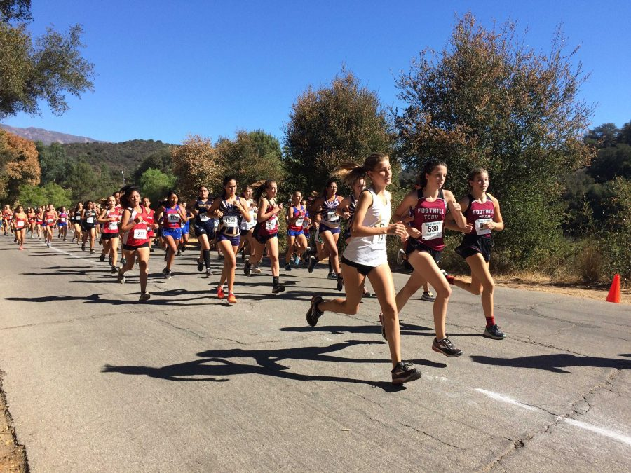 The+beginning+of+a+crowded+girls%27+1.9+mile+race.+Credit%3A+Dylan+Mullaney+%2F+The+Foothill+Dragon+Press