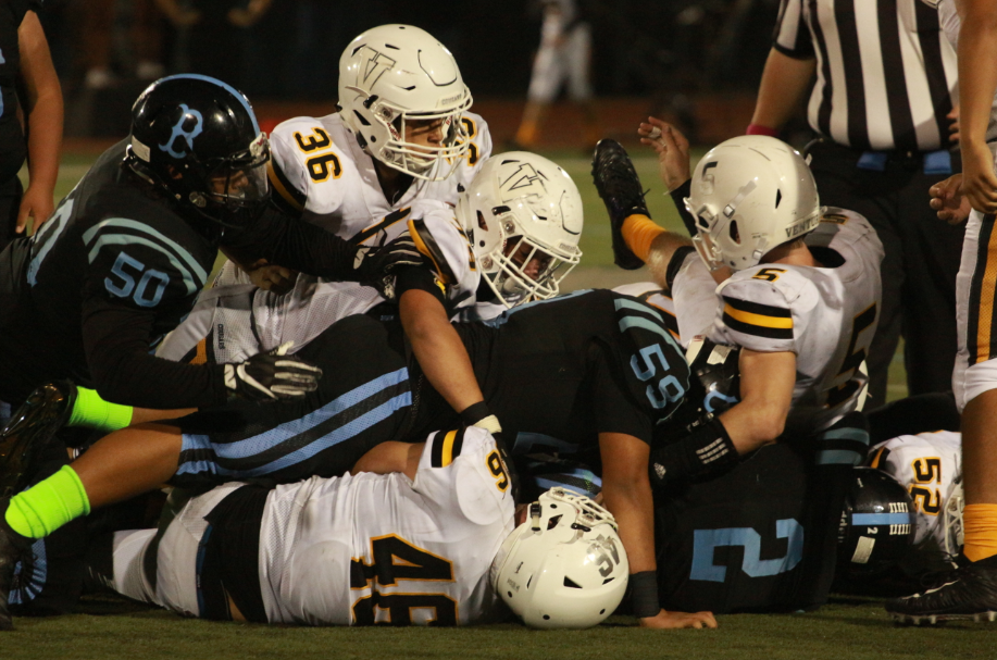 A Bulldog and cat pile. Credit: Jason Messner / The Foothill Dragon Press