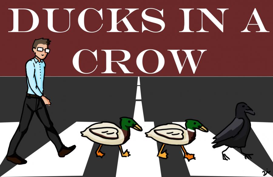 Cartoonist+Lillian+Li+visually+depicts+math+teacher+Wayne+Powers%27+popular+joke+%22get+all+of+your+ducks+in+a+crow.%22