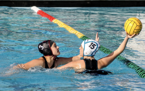 Girls' water polo is victorious against Malibu sharks