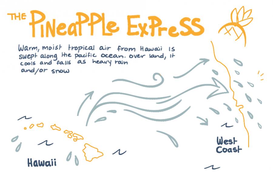 Visual depicting the Pineapple Express. Credit: Maya Avelar / The Foothill Dragon Press