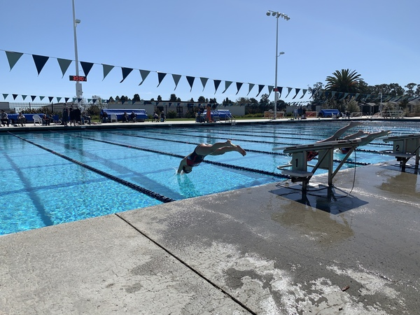 Alyssa Mendoza '19 dives off the block during her 200 free.