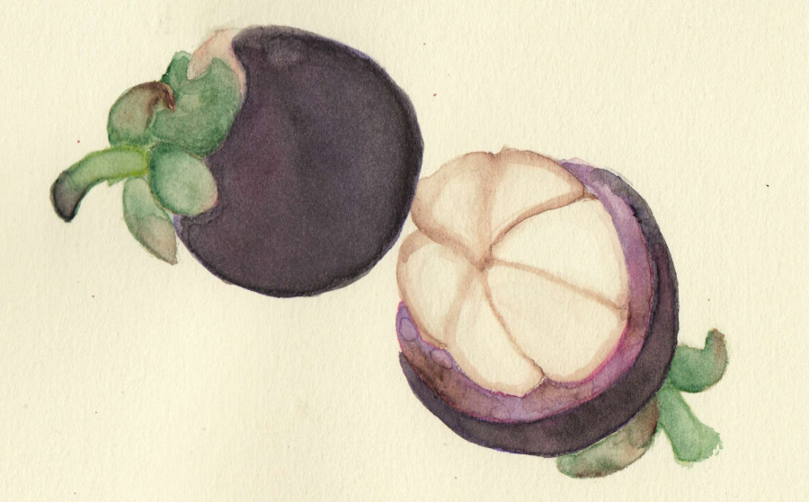 The underrated treat, the Mangosteen fruit