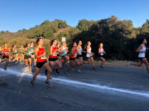 Cross country wins league finals for fifth straight year