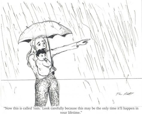 Cartoonist Naomi Schmitt feels like rain is phenomenon few Californians have experienced
