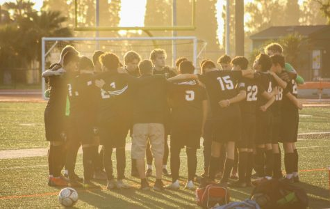 Boys soccer sweeps Cobalt Cougars in first round CIF playoff, continue to be victorious
