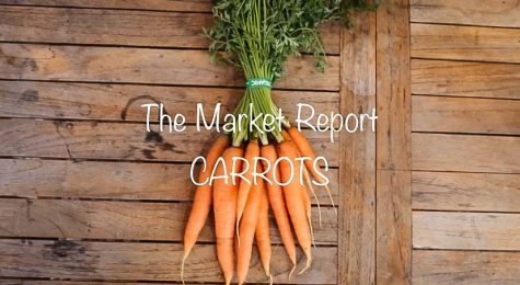 The Market Report: Carrots