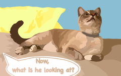 Illustrator Kaelyn Savard notices that due to our time in quarantine, we have all began to notice the little things a lot more. More specifically in the case of cat owners, the weird way their cats will look at the ceiling for no apparent reason.