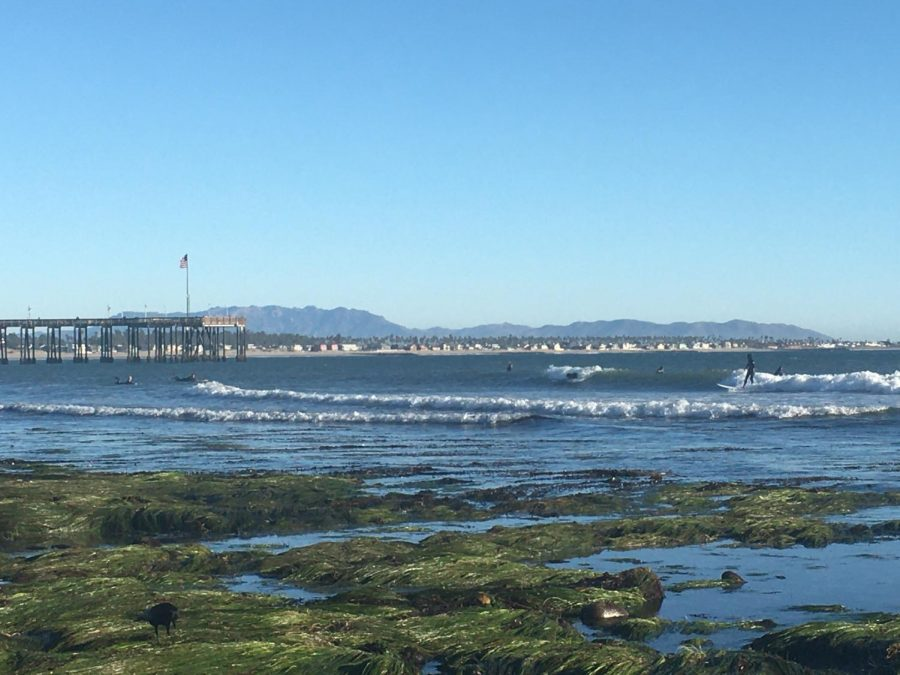 Low tide and beginner friendly waves at Surfers Point.