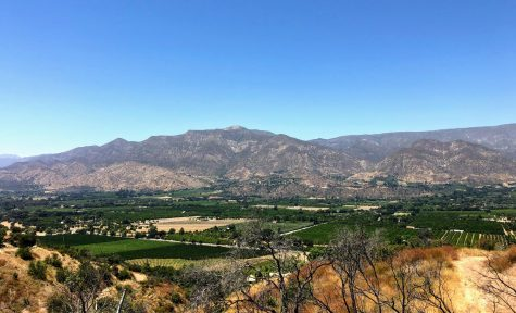 Fill your belly with Ojai delights