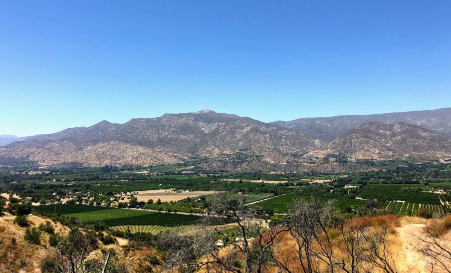 Ojai is a beautiful area where you can also indulge in incredible food!