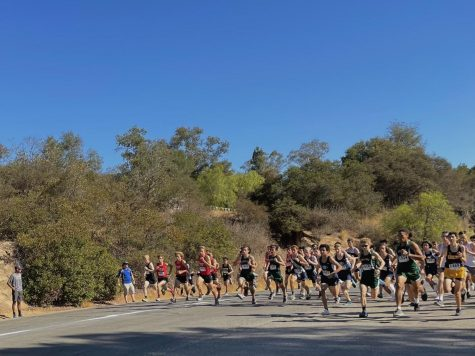 Cross Country prevails at the Ojai Invitational