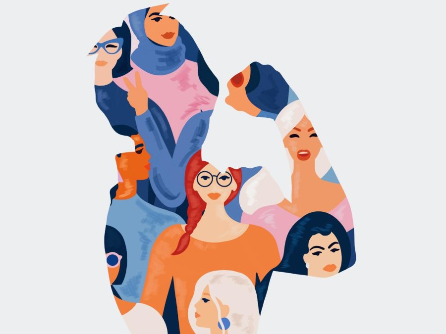 Misrepresentation of teenage girls in media and entertainment cause the young female viewers of that media to generate unachievable standards for themselves in regards to intelligence, beauty and self-confidence.
