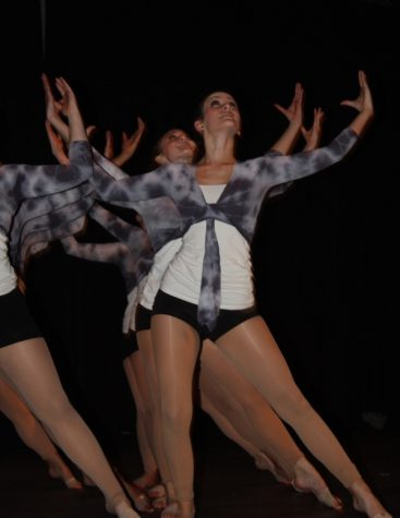So, you think your school can dance? (19 photos & video)