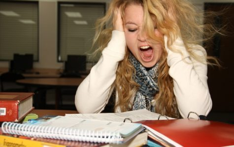 Ten ways to maintain your sanity during finals week