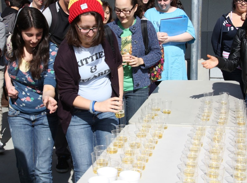 Seniors picked up glasses of apple cider in order to toast the rest of their year. Credit: Megan Kearney/The Foothill Dragon Press.