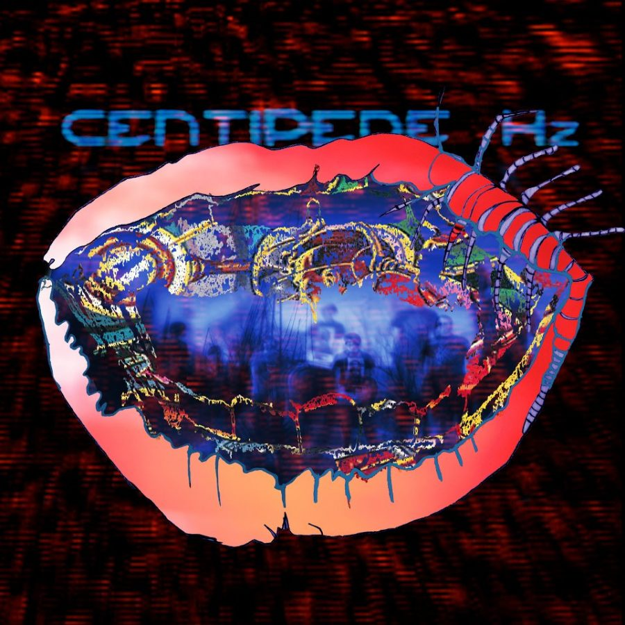 """Animal Collective released their new album """"Centipede Hz"""" on August 28, 2012. Credit: Domino"""