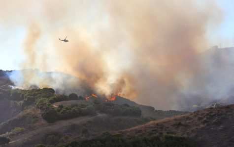 UPDATED: A 39-acre wildfire behind Arroyo Verde fully contained (12 photos)
