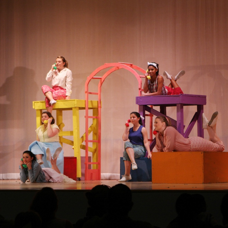 "Venture High School students shined in the performance of ""Bye Bye Birdie."" Credit: Felicia Perez/The Foothill Dragon Press"