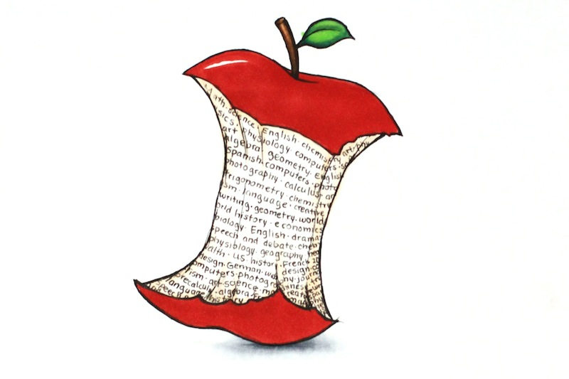 """Starting next year, Foothill will implement a new teaching curriculum called """"Common Core."""" Credit: Claire Stockdill/The Foothill Dragon Press"""