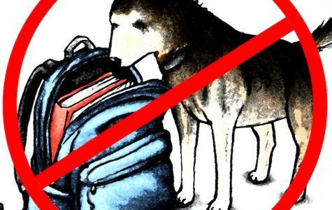 Drug-sniffing dogs are the beginning of the end of our rights as students