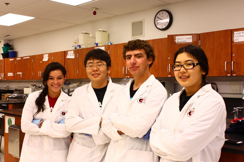 Seniors (from left) Amanda Torres, Jongseug Baek, Eric Moll and Emily Park participated in a lab that tested whether or not the meat in our grocery stores was what it was labeled as. Credit: Aysen Tan/The Foothill Dragon Press
